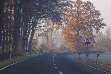 empty asphalt road in a forest - autumn foggy morning