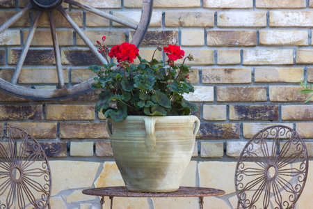 beautiful place in the garden in the mediterranean style, pot with pelargonium on the table 版權商用圖片