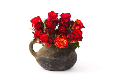 red roses in a vase on white background