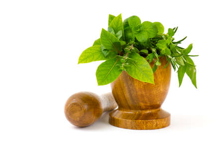 Mortar with fresh herbs on white background