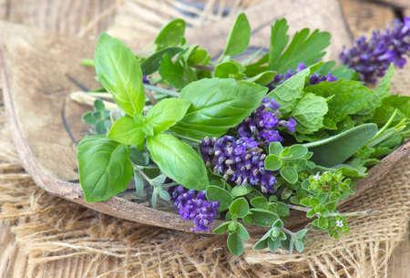 Freshly harvested herbs on a clay plate 版權商用圖片