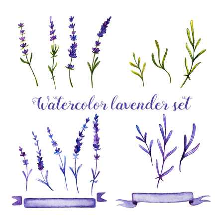 inkle: Set of watercolor lavender and ribbons on white background. Handdrawn watercolor illustration.