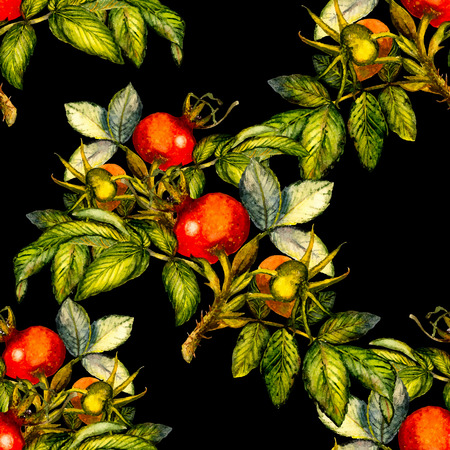 Rosehip seamless pattern on black background, hand painted watercolor illustration, design for fabric, textile, wrapping paper, card, invitation, wallpaper, web design.