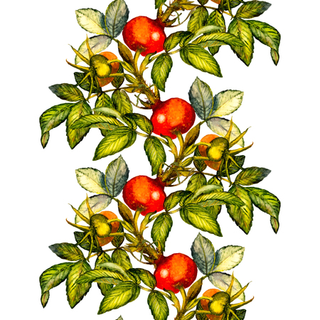 Rosehip seamless pattern border on white background, hand painted watercolor illustration, design for fabric, textile, wrapping paper, card, invitation, wallpaper, web design. Illustration