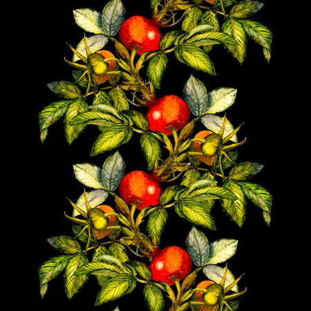 Rosehip seamless pattern border on black background, hand drawn watercolor illustration, design for fabric, textile, wrapping paper, card, invitation, wallpaper, web design.
