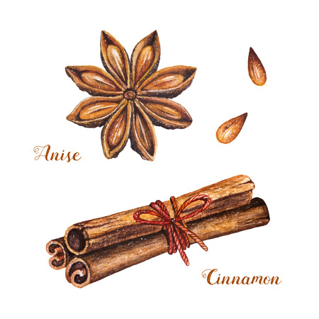 Set of spices with cinnamon sticks and star anise on a white background. Watercolor isolated illustrations set. Vector design by flyer, poster, printing, mailing, invitation, card, menu of cafe