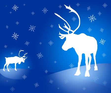 Christmas design: two raster caribou reindeer white silhouettes with snowflakes on vignette blue background photo