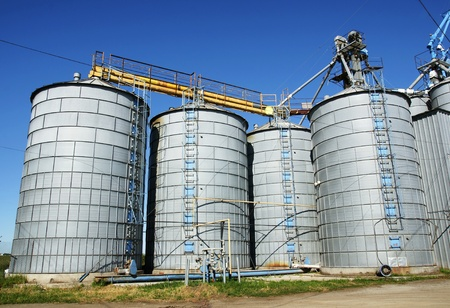Agriculture: Group of silos filled with cereal grain against blue sky.