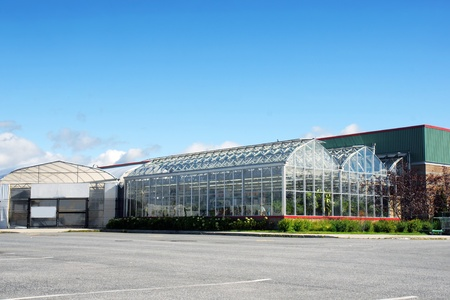 hardware store: Greenhouse and nursery of a large hardware store.