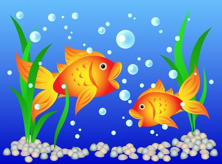 Fun and colorful: goldfish in an aquarium with algae and pebbles. Vector