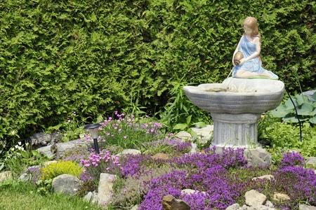 water thyme: Hermoso paisajismo  front yard curb apelaci�n: joven romano o estatua de mujer de estilo griego vertiendo agua en una fuente, rodeada de una gran variedad de flores con tomillo en flor p�rpura y una pared de �rboles de cedro.