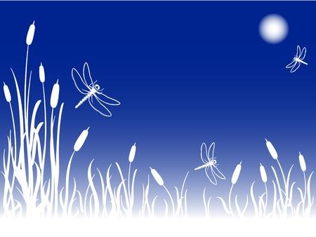 hoog gras: Libellen in de lucht op een mistige volle maan 's nachts meer dan een moeras met lisdodde en hoog gras, een grote natuurlijke achtergrond met kopie ruimte. Stock Illustratie