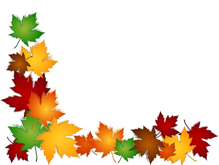 hojas parra: Hojas de arce en una variedad de colores del otoño o el otoño con las sombras que forman una frontera de temporada, perfecto para las tarjetas y los gustos. Vectores