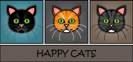 gray cat: Paper header or web banner with cute and fun graphic cartoon  black, orange and grey tabby cats on dark background.