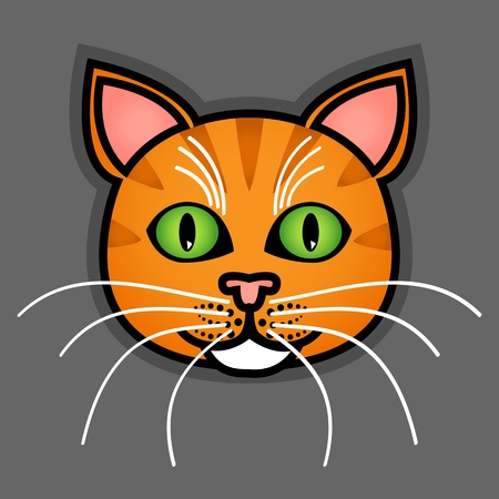 grey cat: Cute and fun graphic cartoon orange tabby cat on grey background.