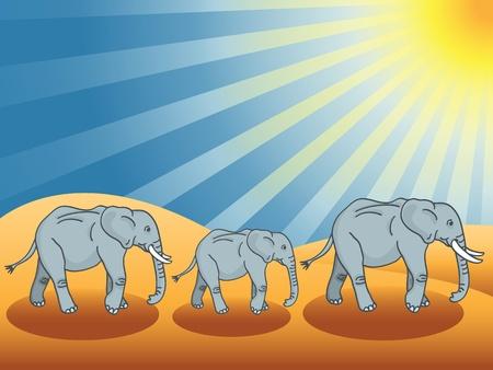 Desert elephants under the sun walking in the sand dunes.