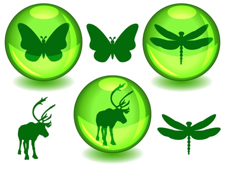 Butterfly, dragonfly and caribou or reindeer silhouettes on their own or in glossy green sphere with drop sahdow, perfect symbols for ecology or biodiversity protection