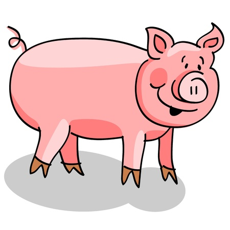 Cute and fun cartoon pig with shadow over white background.