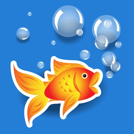 Cartoon goldfish label or sticker with white border with bubbles and shadows over water blue background