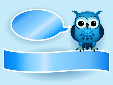 Beautiful blue cartoon owl with speech bubble and banner with drop shadows, perfect for a baby boy announcement card. Stock Vector - 13563255