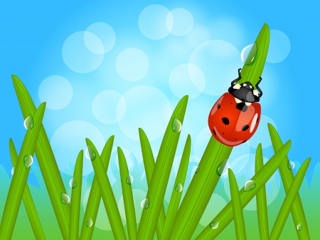 Beautiful macro landscape with cute ladybug on grass blade with drops of water or morning dew with sky background and bokeh. Çizim