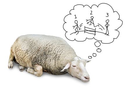 counting: Funny concept of cute sheep with lots of wool, isolated on white counting hand drawn human stickfigures jumping over a fence to fall asleep.