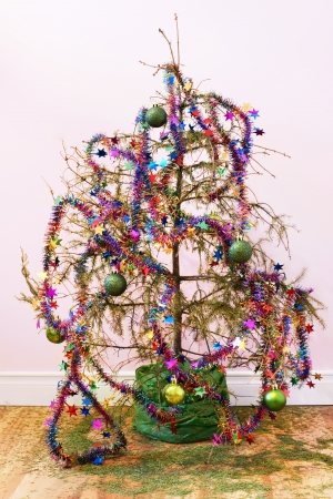 End of the holidays or other concept: dead fir Christmas tree with dried up needles all over the wood floor; star garland and ornaments left in the tree. Standard-Bild