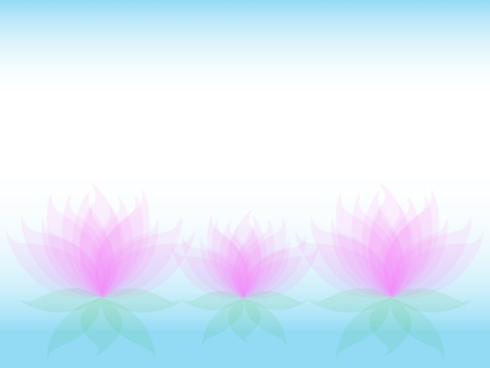 Soft transparent water lilies flowers with pink petals and green leaves