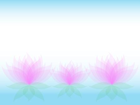 water lilies: Suaves flores lirios transparentes de agua con p�talos de rosa y hojas verdes