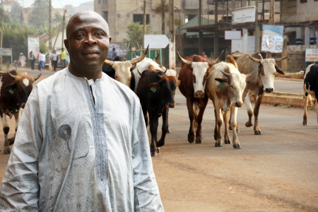 African cattle farmer or herdsman leading his herd of cows on a busy city street photo