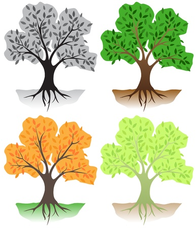 Deciduous trees in different colors Vettoriali