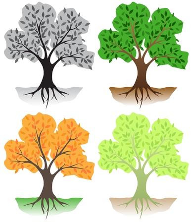 g�n�alogie: arbres � feuilles caduques en diff�rentes couleurs Illustration