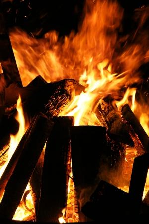 Bonfire with burning wood logs