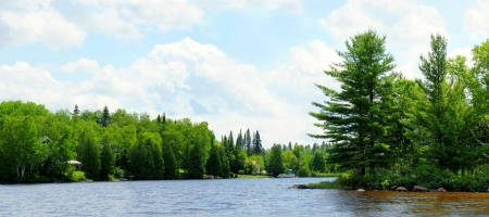 treeline: Panorame of a Northern lake, summer vacations or nature landscape