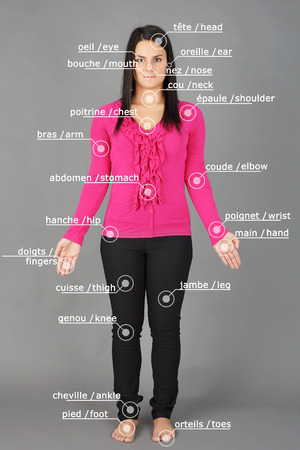 Human anatomy or body: woman posing on grey with french and english words