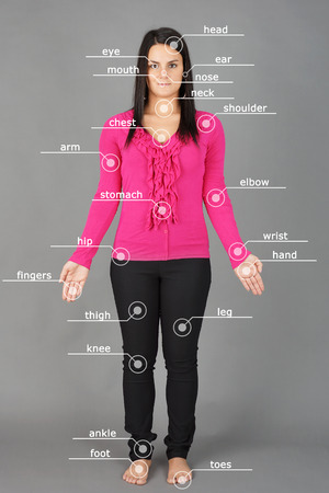 anatomy body: Human anatomy or body: woman posing on grey background