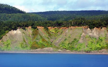 erosion: Land or shore erosion: trees fallen over sand dune cliff, climate change