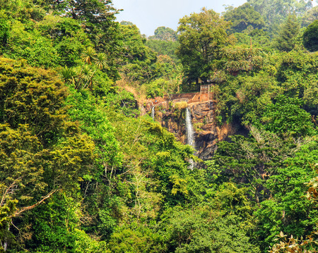 African lush rainforest around high Mamy Wata waterfall, Cameroon nature background