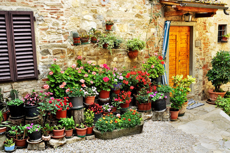 Potted plants: House in Italy with many potted flower plants