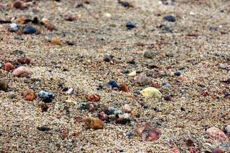 gritty: Wet sand and rocks on a beach, closeup, shallow DOF