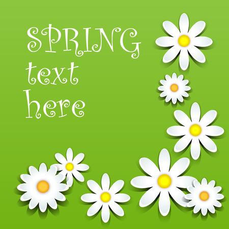 petal: Fun white daisies with shadows over green, spring theme