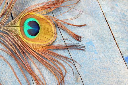 irridescent: Eye of a peacock feather on blue grunge wood background Stock Photo