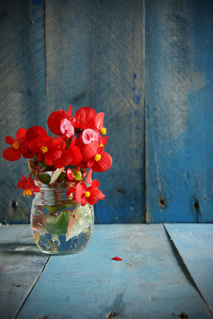 vignetting: Red flowers in glass jar on blue wood background vertical-natural light, vignetting