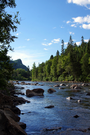 Small salmon river in Quebec, Canada, vertical.
