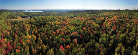 Aerial panorama of colorful fall forest