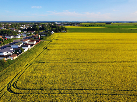 Aerial view of rural area and farmland with golden fields Stock fotó - 90884521