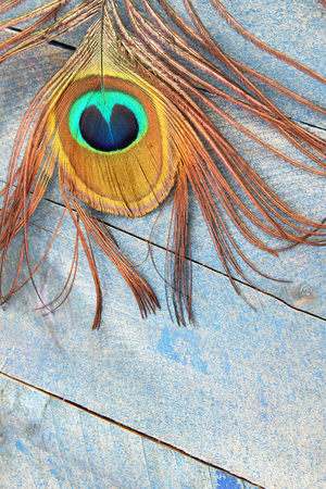 Eye of a peacock feather on blue grunge wood background Stock fotó - 91085682