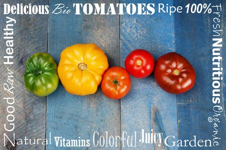 Beautiful row of colorful green, yellow, orange, red tomatoes with text border Stok Fotoğraf
