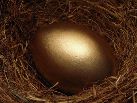 Golden egg in birds nest. Stock Photo