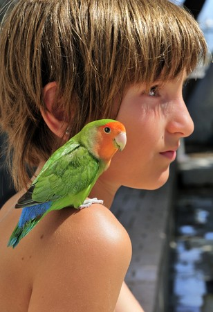 Lovebird on child's shoulder